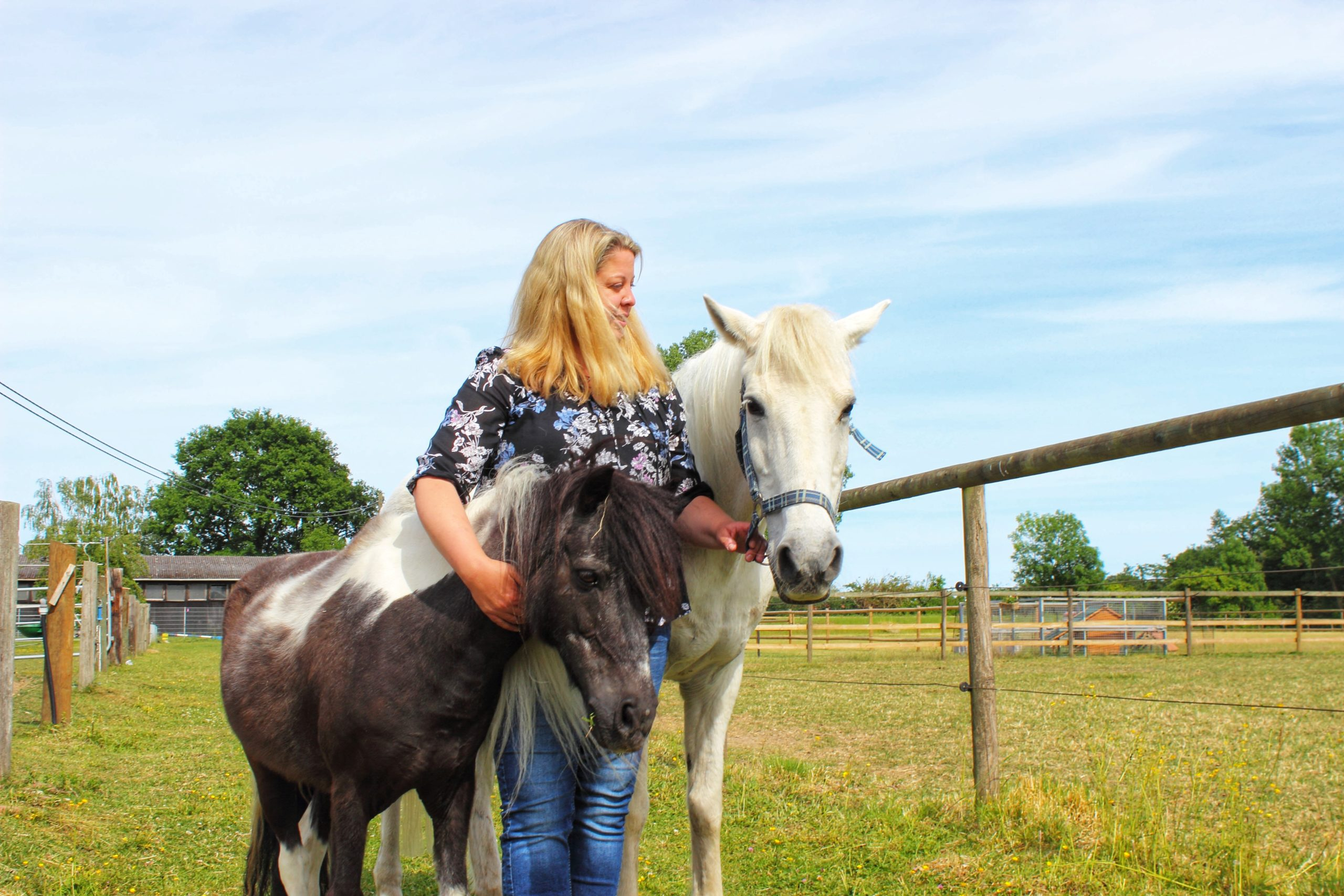 Herzensgutteam Sandra Lefert Pferde-01